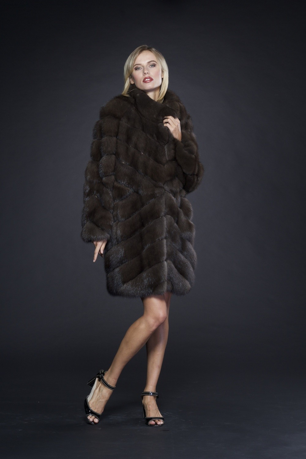 Sable nf 0006